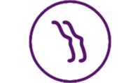 Ange Analytics logo
